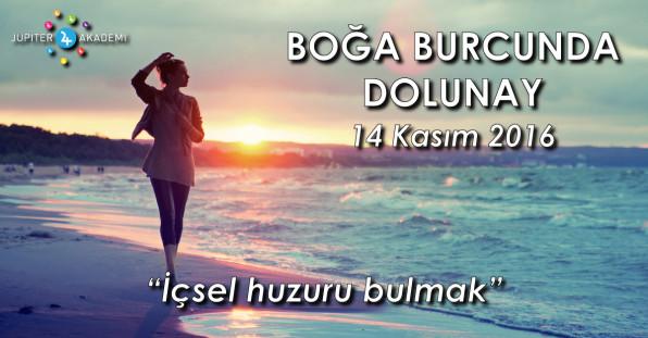 Boğa Burcunda Dolunay - 14 Kasım 2016